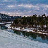Пробуждение после зимы :: Sergey Oslopov