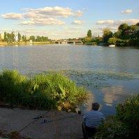 На рыбалке :: Ольга Винницкая