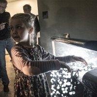 Волшебный сундук :: Людмила Синицына