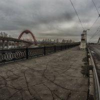 Непогода :: Алексей Соминский