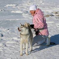 Этюд в бело-розовых тонах :: Владимир Шибинский