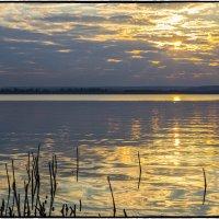 Золотая вода. :: Юрий Клишин