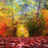 Осень :: Мисак Каладжян