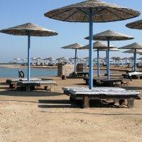 отель Хилтон. Пляж на Красном море. январь. :: Лидия кутузова