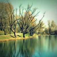просто пришла весна :: Lilek Pogorelova