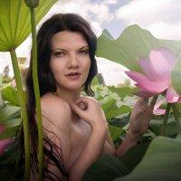 Макарова цветы :: ibragimov .