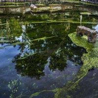 священная вода балийцев :: Александр