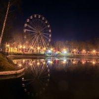 Ночной парк Людмилы Путиной, Калининград :: Олег Владимирович