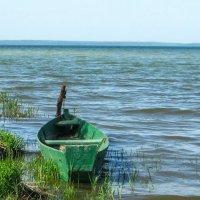 качалась лодка на волнах :: Лариса *