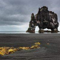 Исландский слоник :: Eugene Remizov