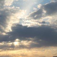 солнечные лучи :: мария шведа