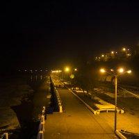 огни набережной :: Альбина Еликова