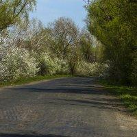 Весна :: Татьяна Кудельская