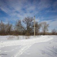 Зимний пейзаж. :: Анастасия Никитина