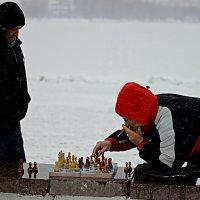 зимний гамбит :: Александр Судаков