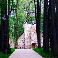 Башня в лесу :: Елена S