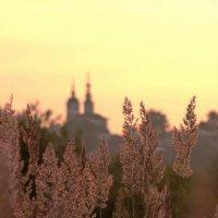 На закате! :: Владимир Шошин