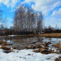 Весна в моей деревне :: Светлана