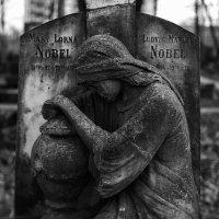 Дети семьи Нобель :: Анна Анхен