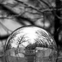 отраженья в зеркалах :: Александр Малышев
