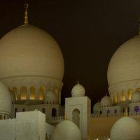мечеть Sheikh  Zayed :: человечик prikolist