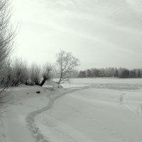 А зима не сдается :: Иван Кошечкин