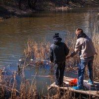 Весенняя рыбалка :: Владимир Кроливец