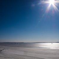 Мороз и солнце день... :: Алексей Сараев