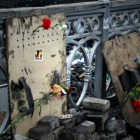 Euromaidan :: Inna Radchenko (Gorovaya)