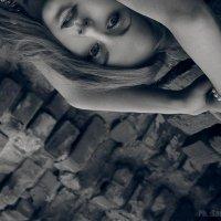 brick wall :: Sandra Snow