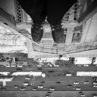 Мир под моими ногами. :: Георгий Ланчевский