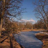 В парке :: Владимир Макаров