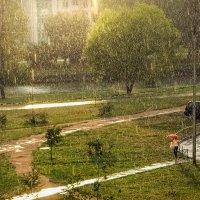 Слепой дождь :: Алексей Окунеев