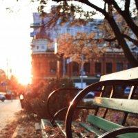 Осень в Ростове-на-Дону :: Andrew Shmyrew