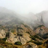 Ущелье в тумане :: Roman Arnold