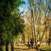 Осень :: Кристина Тарасова