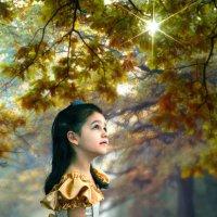 В волшебном лесу :: Сергей Михайлов