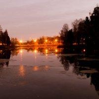 Городские огни :: Маруся Шитова