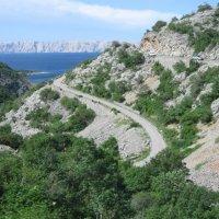 Дорога в Национальный парк :: Светлана Игнатьева