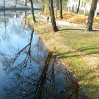Осень :: Lina Liber