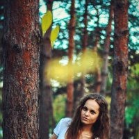 Осень Осень Осень... :: Игорь Прокофьев