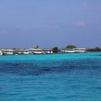 Мале...(Мальдивы)... :: Александр Вивчарик