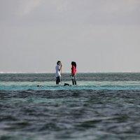 Мальдивы...о.Маафуши... :: Александр Вивчарик