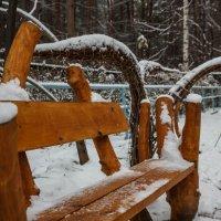 просто наступила зима :: Дмитрий Карышев