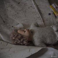 "Фотоотчет с акции организации ""Все дома"" :: Яна Бобкова"