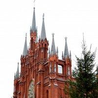 Католический собор 1 :: Никита Пелевин