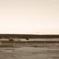 Стоит в поле теремок-теремок... :: Рустам Ромуальдо