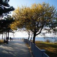 Осень в Анапе :: Syncman silver