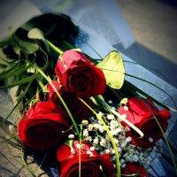 Цветы. :: Наташа Белоусова