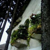 Балконы :: Елена Сижук